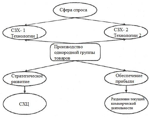 Соотношение между стратегической зоной хозяйствования и стратегическим хозяйственным центром